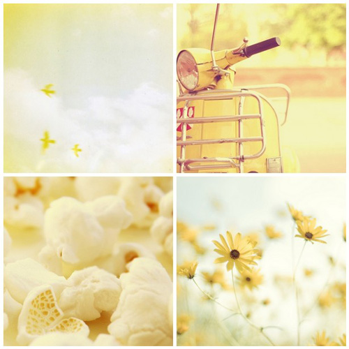 Flickr Sunshine Photography Daily Inspiration Design Art Style Photo Photographer Yellow Sun Flowers Popcorn Daisies Scooter Sunset Clouds Lemon