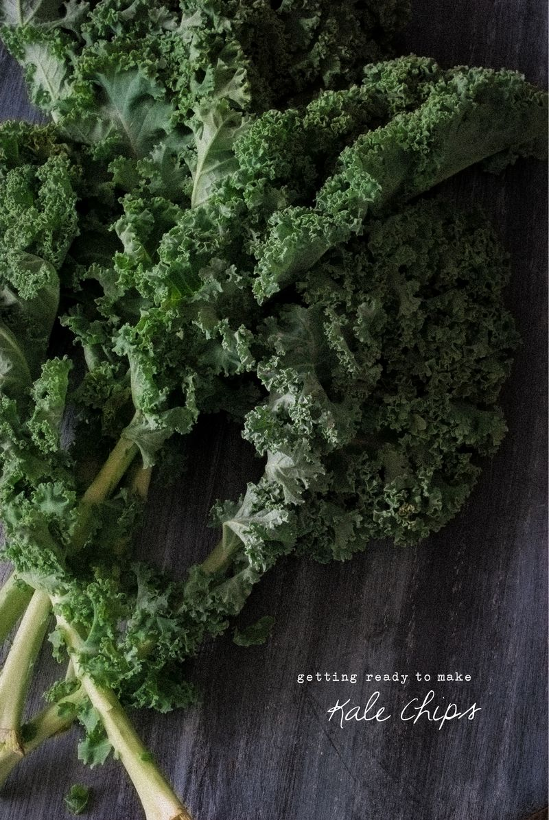 Wolf Pea Sugar Free Kale Chips Detox Health Coach Recipe Blog