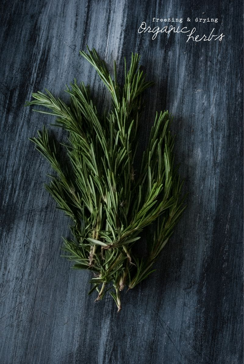 Wolf Pea Sugar Free Vegan Rosemary Detox Health Coach Recipe Blog